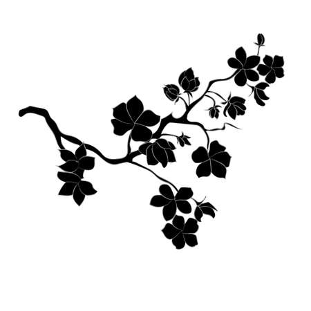twig sakura blossoms. Vector illustration. Black Silhouette