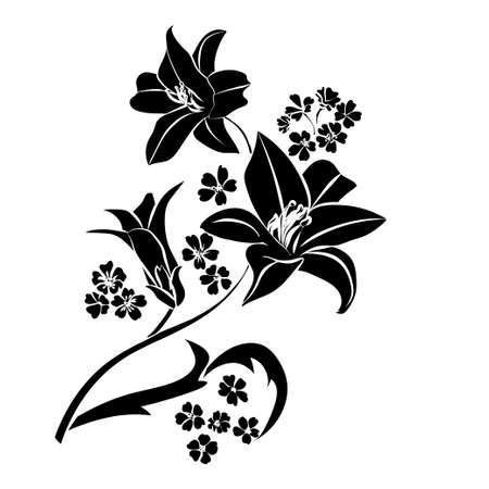Silhouette Lily. Black outline on white background. Vector illustration. Çizim
