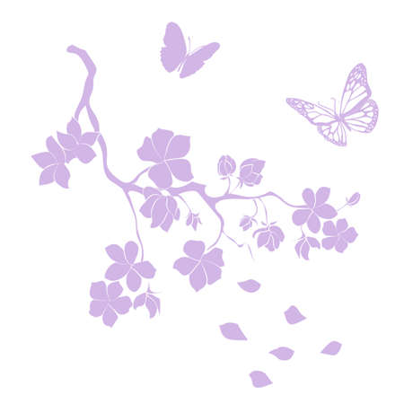 pink cherry blossoms branch are on white background. Vector illustration