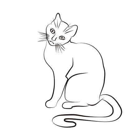 Cat  face. Black and white sketch. Vector illustration