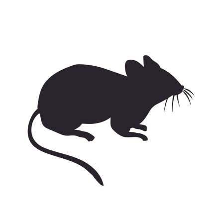 vector silhouette of the mouse  on white background