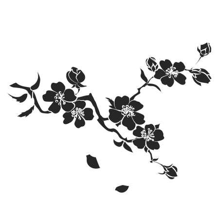 flor de sakura: ramita flores de sakura. Ilustración del vector. Negro Silueta Vectores