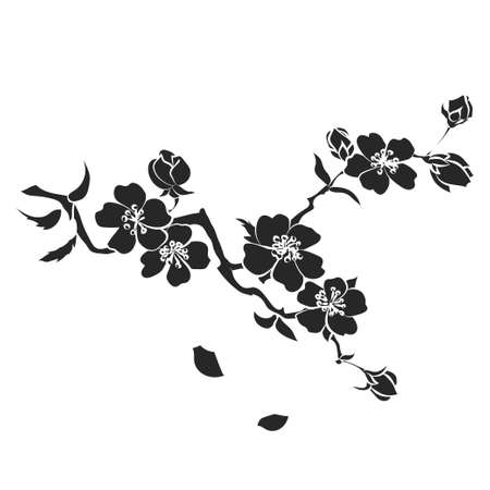 sakura flowers: twig sakura blossoms. Vector illustration. Black Silhouette
