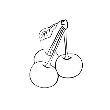 three leaf: monochrome illustration of three ripe cherries with leaf