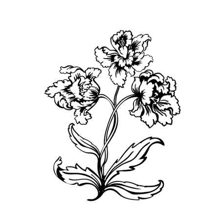 Flower tulip. Black outline on white background, vector illustration