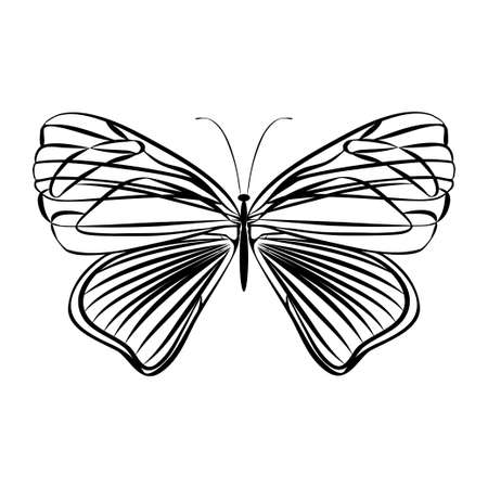 Fantasy butterfly on white background. Abstract design. Vector illustration. Illustration