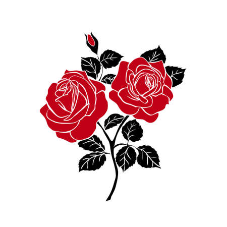 silhouettes of rose isolated on white background. Vector illustration.