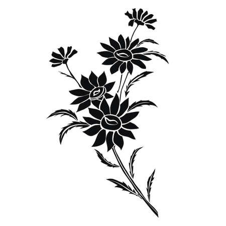Daisy wielen. Zwart silhouet op witte achtergrond. Vector illustratie