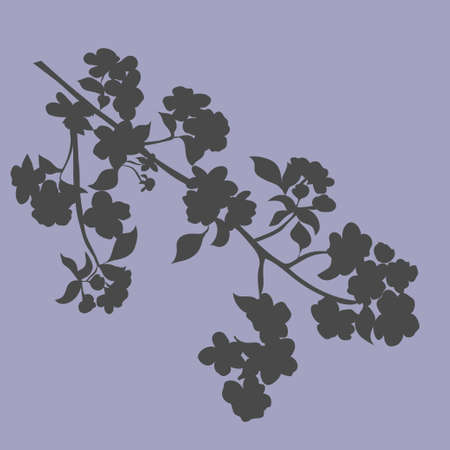 appletree: twig apple-tree blossoms. Vector illustration. Silhouette. Shades of grey