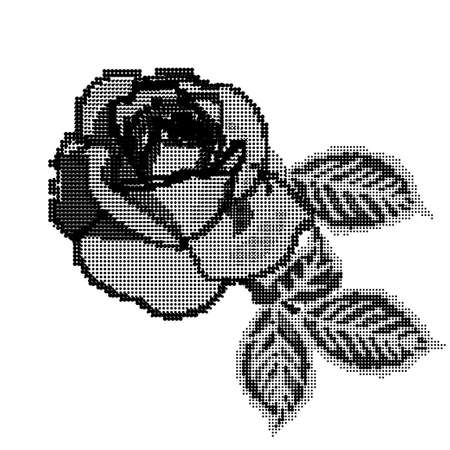 Monochrome Rose flower in the style of embroidery.Vector illustration Illustration