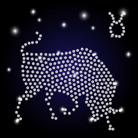 Sign of the zodiac Taurus is the starry sky, vector Illustration. Contour icon.