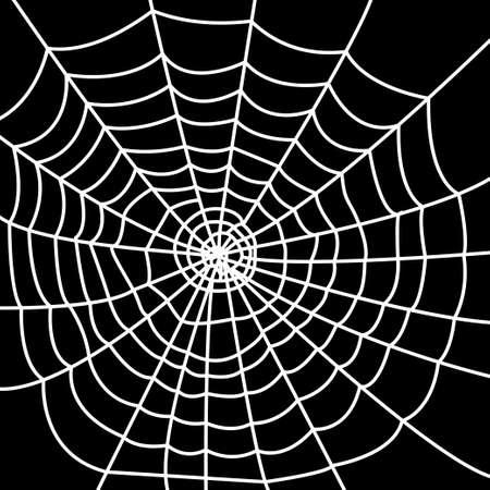 ploy: White spider web on dark background.