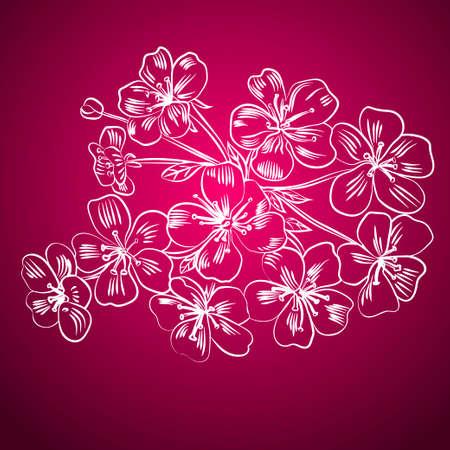 Twig sakura blossoms. Vector illustration. White outline Ilustração