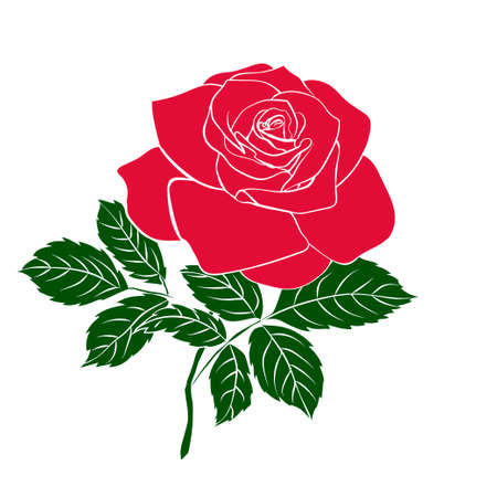 Silhouettes of rose on white background, vector illustration.