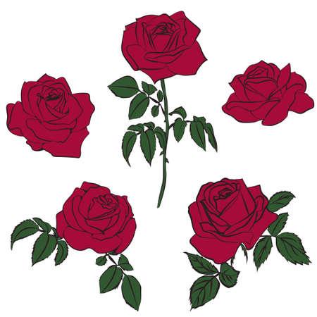 Silhouettes of roses on white background, vector illustration. Illustration