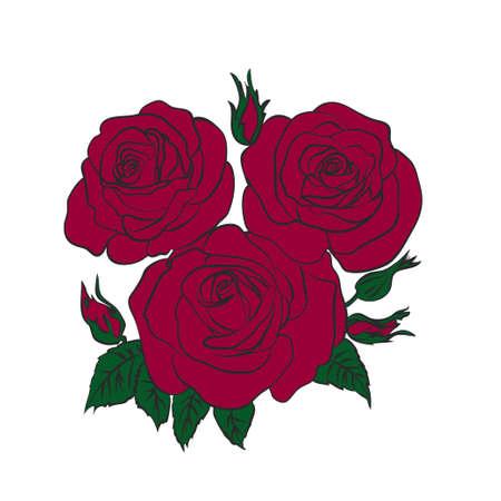 rose template vector illustration