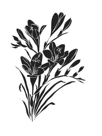 Bouquet of Freesias.Freesia silhouette vector illustration.