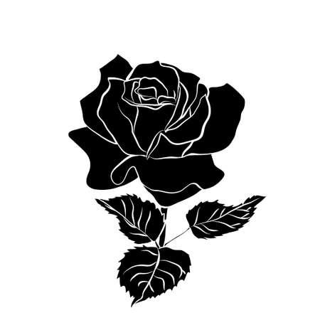 silhouette of rose vector illustration