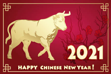 Year year of the Bull. 2021 year.
