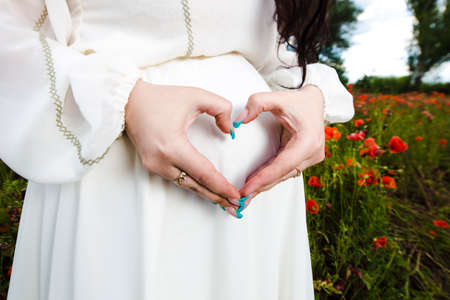 shaped hands: heart shaped pregancy in a flowering poppy field outdoors, close up heart shaped hands