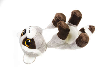 forgiving: Cute cuddly raccoon toy. Raccoon - small plush toy animal