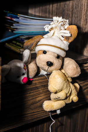 plush toys: conceptual photography, escape plush toys from home, 3 toys get out of the box
