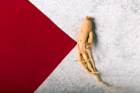 ginseng on a gray background with an arrow of red material with space for text 免版税图像