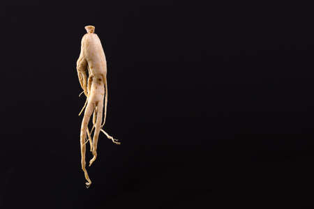 ginseng on a black background with space for text