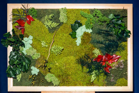 picture of decorative moss and green and red leaves