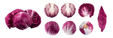 red radicchio set isolated on white background
