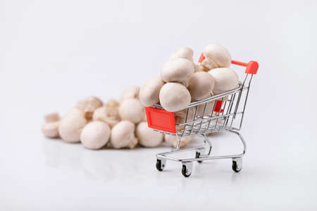 Buying healthy food concept. Shopping trolley with mushrooms on gray background.