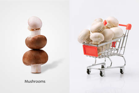 Creative layout made of mushrooms in shopping cart and champignon tower, mushroom buying concept