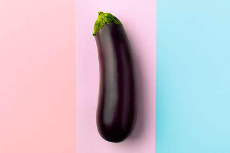 Fresh raw dark purple eggplant on multicolor background, the concept of vegetarianism Imagens