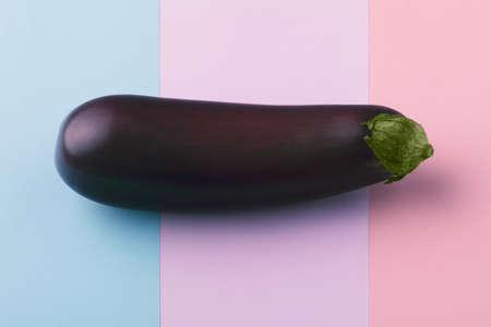 Fresh raw dark purple eggplant on multicolor background, the concept of vegetarianism 写真素材