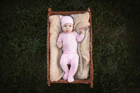 newborn 2 month old baby lies in a basket on the grass 免版税图像