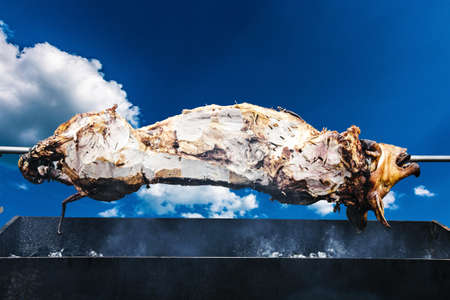 pig on the spit cooked on the grill, barbecue concept