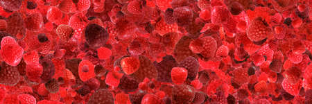 red fresh raspberry background, panoramic image