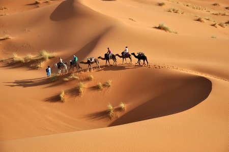 sahara desert of morocco in africa photo