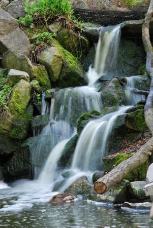smal: smal cascade waterfall in forest