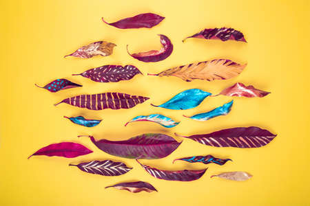 Vibrant vivid red, blue and yellow colored acrylic painted leaves on yelow background texture. Flat lay background. Imagens