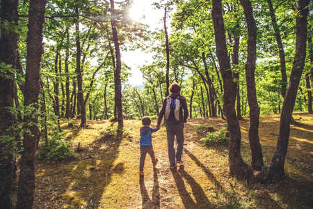 Father and son walking in the forest together holding by the hands opposite evening sun. Back view.