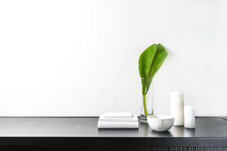 Interior design of room, mock-up, vase and green plant of banana tree, candles, white books on black table and white wall. Minimalism style.