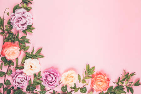 Vivid colored roses buds and green leaves composition on pink background. Flat lay style.
