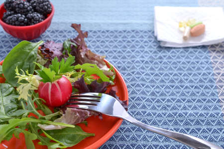 nutritional therapy: Spring mix salad, blackberries, and antioxidant supplements on blue table cloth