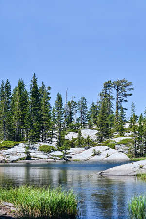 sierras: Sierra Nevadas upper Loch Leven Lake at mid-day in the summer, with pine trees in the background Stock Photo