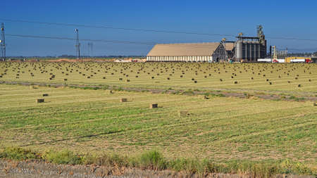 Davis, California, USA, 10 Aug 2016 - SHF Rice Dryer and Warehouse is the cluster of big grain silos that can be seen on the western side of the Yolo Causeway. This This facility dries harvested rice and stores it for a fee. Editorial