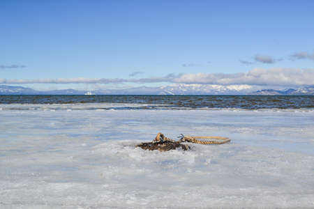 waters: Boat anchor at frozen waters of lake tahoe in the winter.