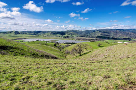 Panoramic view of the Lagoon Valley Park in Vacaville, California, USA, featuring the chaparral in the winter with green grass, and the lake