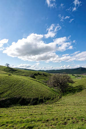 Panoramic view of the Lagoon Valley Park in Vacaville, California, USA, featuring the chaparral in the winter with green grass