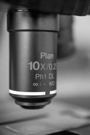 Selective focus on the objective of a transmitted light scope, 10 times magnification, in black and white Banco de Imagens